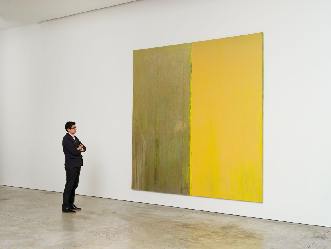 Installation view of Naples Yellow and Mica, 2013