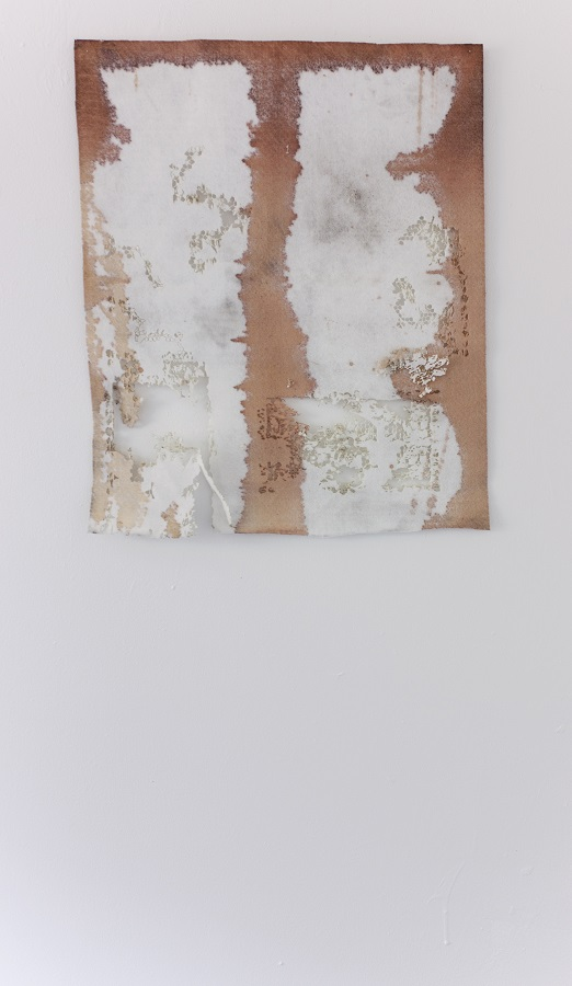 Diana Puglisi, Putrefaction, 2015. Fabric dye on interfacing, 18 x 21 1/2 inches. Courtesy of the artist.