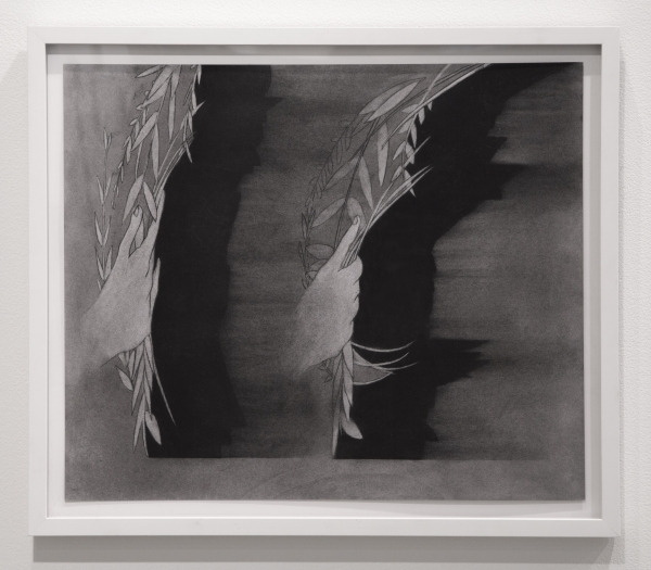 Dana Lok, Frame by Frame, 2015. Charcoal on paper, 19 x 20 inches. Courtesy of the artist.
