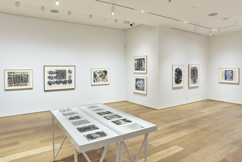 Installation view of Terry Winters: Facts and Fictions.  The Drawing Center, New York, April 6 – August 12, 2018. Photograph by Martin Parsekian.